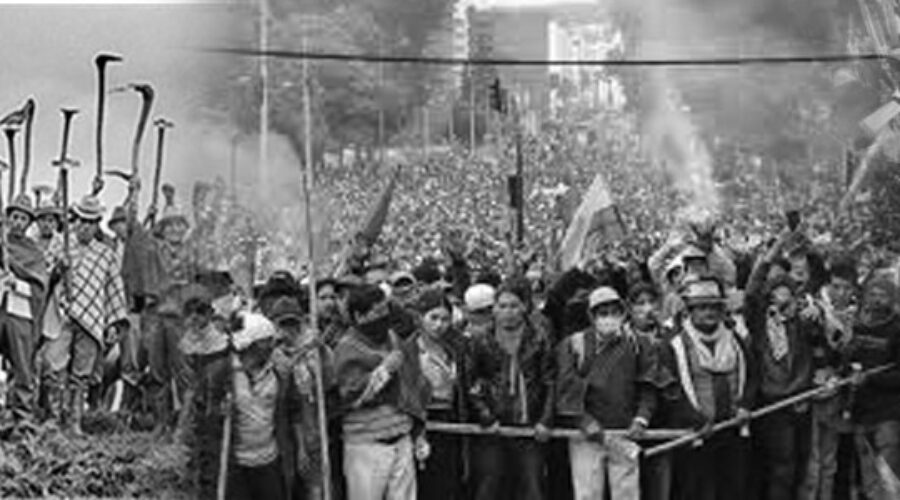 Movimientos sociales: proyectos y acción política